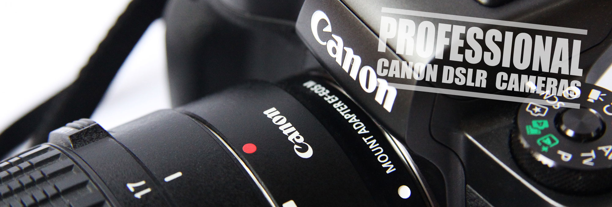 Best Canon Camera for Professional Photography